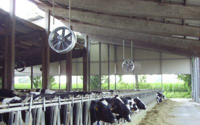 Pályázható fejlesztés: állattartó telepek hűtése párásítással