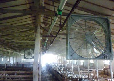 Ipari párásítás, légnedvesítés istállóban